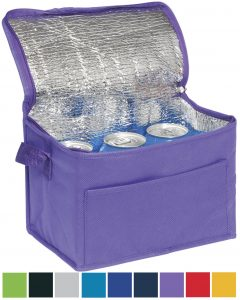 Rainham 6 Can Promotional Cooler Bags